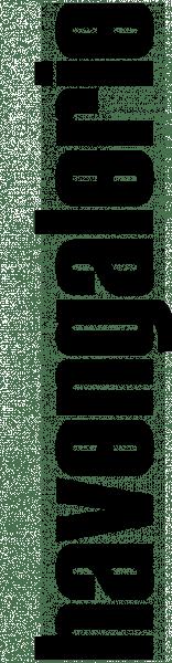 havengalerie-logo