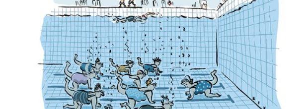 Bild von Karikaturen & Komisches